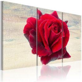 Πίνακας - Lyrical rose