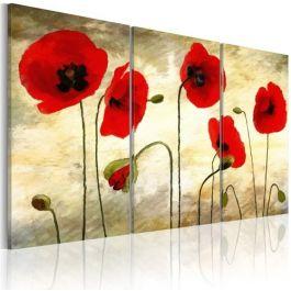 Πίνακας - Paper thin beauties
