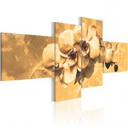 Πίνακας - Orchids in sepia