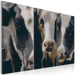 Πίνακας - Piebald cow