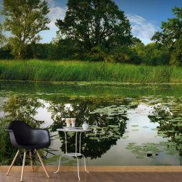 Φωτοταπετσαρία - The Magic Pond