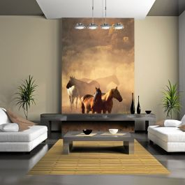 Φωτοταπετσαρία - Wild horses of the steppe