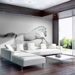 Φωτοταπετσαρία - White gallop
