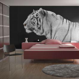 Φωτοταπετσαρία - White tiger