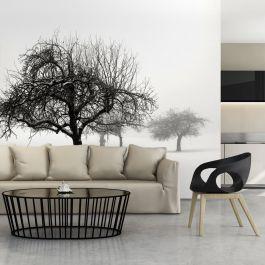 Φωτοταπετσαρία - Winter: Trees
