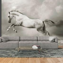 Φωτοταπετσαρία - Wild Stallion