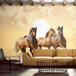 Φωτοταπετσαρία - Running horses