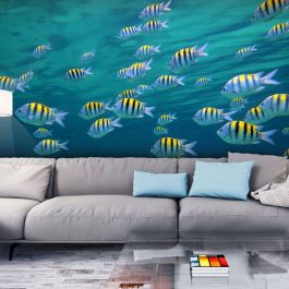 Φωτοταπετσαρία - Underwater landscape - Caribbean
