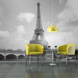 Φωτοταπετσαρία - Seine and Eiffel Tower