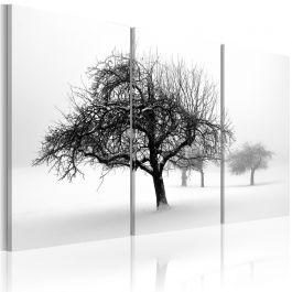 Πίνακας - Trees submerged in white