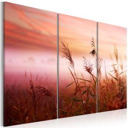 Πίνακας - A silent meadow