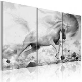 Πίνακας - A unicorn on the edge of the world