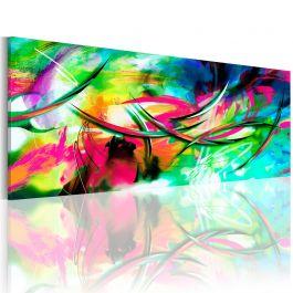 Πίνακας - Madness of color