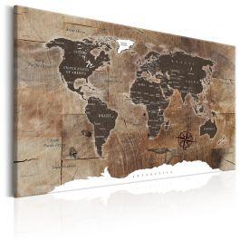 Πίνακας - World Map: Wooden Mosaic