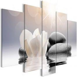 Πίνακας - Natural Lightness (5 Parts) Wide
