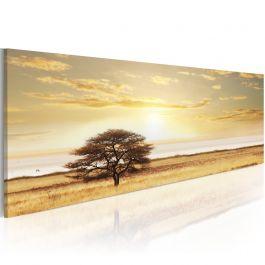 Πίνακας - Lonely tree on savannah 135x45