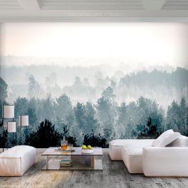 Φωτοταπετσαρία - Winter Forest