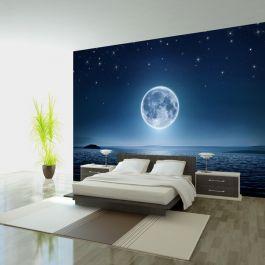 Φωτοταπετσαρία - Moonlit night