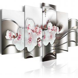 Πίνακας - The beauty of orchids
