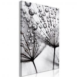 Πίνακας - Morning Dew (1 Part) Vertical