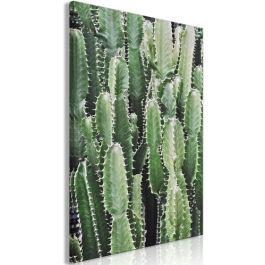 Πίνακας - Cactus Garden (1 Part) Vertical