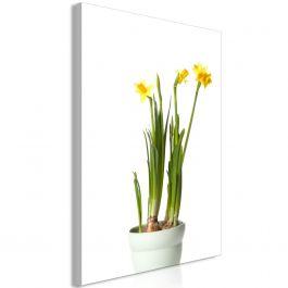 Πίνακας - Narcissus (1 Part) Vertical