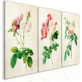Πίνακας - Floral Trio (Collection)