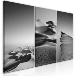 Πίνακας - Desert Landscape (Collection)