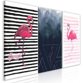 Πίνακας - Flamingos (Collection)