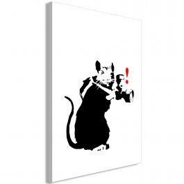 Πίνακας - Rat Photographer (1 Part) Vertical
