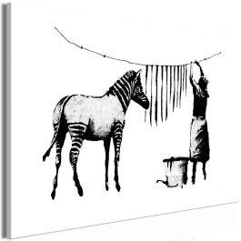 Πίνακας - Banksy: Washing Zebra (1 Part) Wide