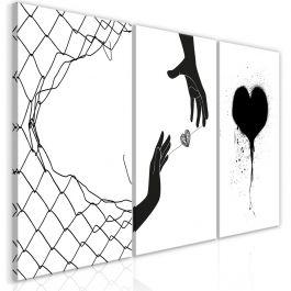 Πίνακας - Heart (Collection)