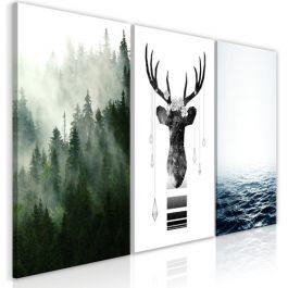 Πίνακας - Chilly Nature (Collection)